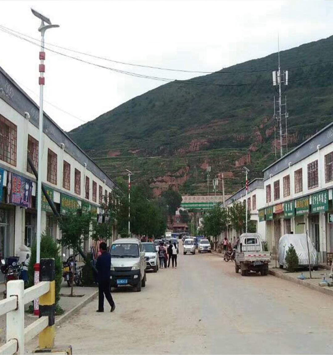 定西市临洮县